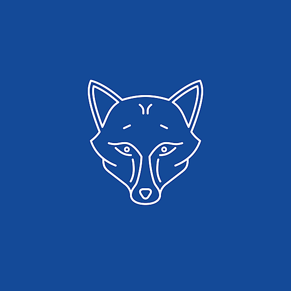 Leicester City FC • Foxes