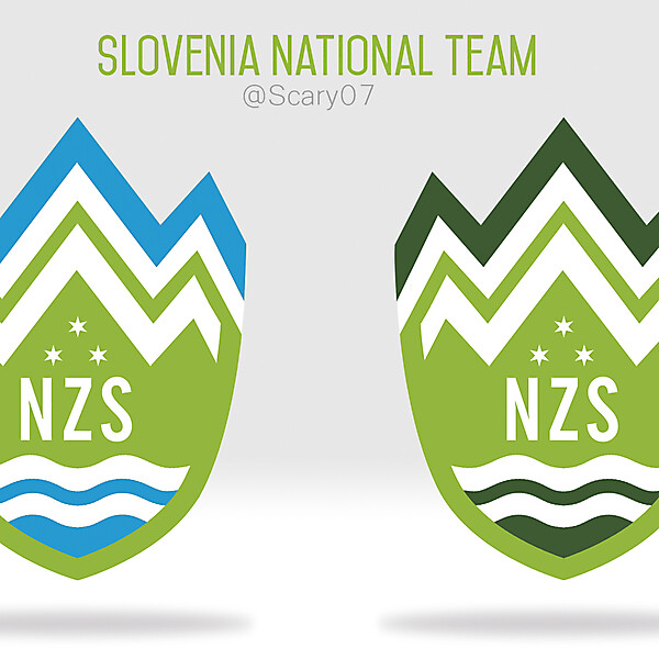 Slovenia national team