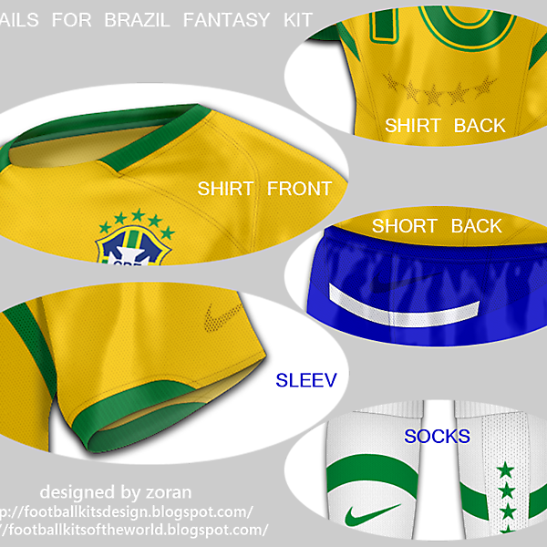 Brazil World Cup 2010 fantasy home details