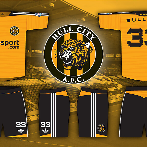 Hull City Home Kit