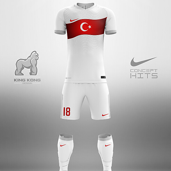TURKEY CONCEPT KITS