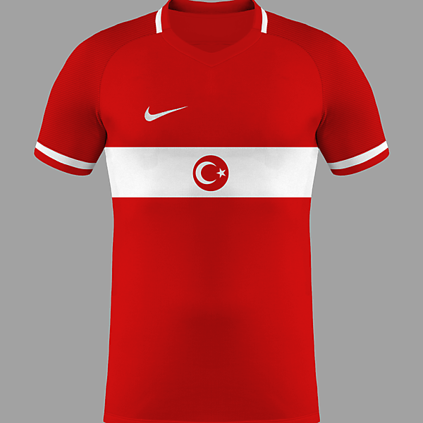 Turkey Euro 2016 Home ?