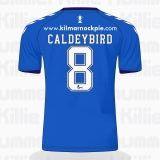 Caldey_Strips