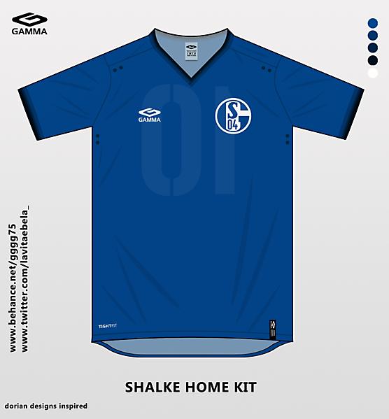 shalke home kit