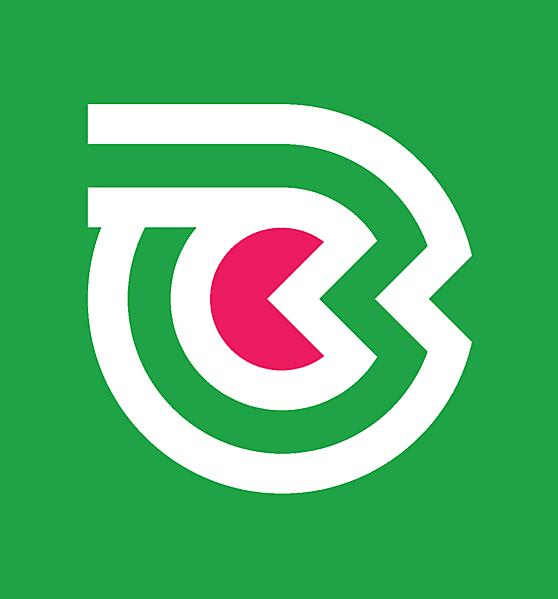 Belarus National team secondary logo idea