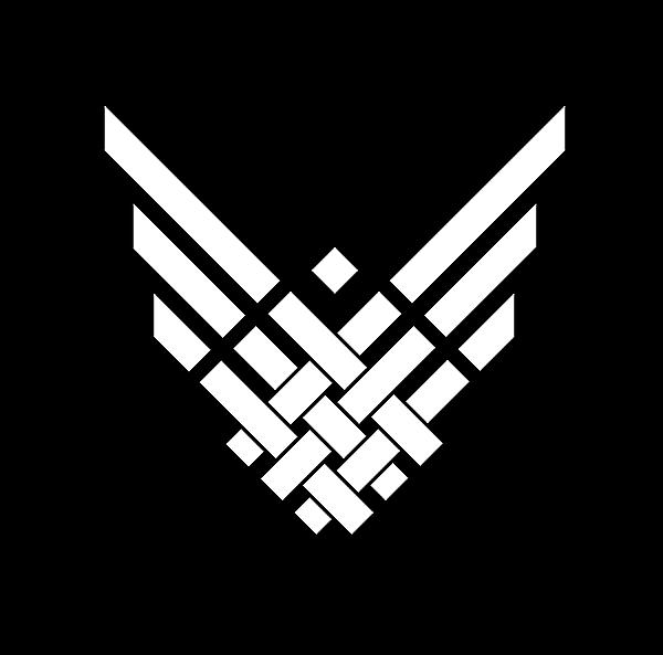 Belarus National team white wings alternate logo idea