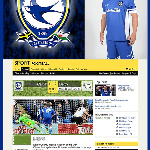 Cardiff City Branding Concept