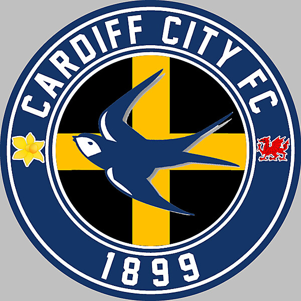 Cardiff City FC 2015