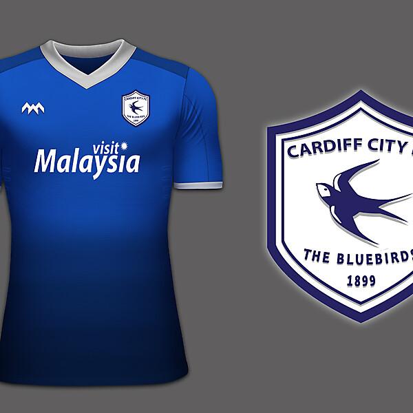 Cardiff Rebrand 2015