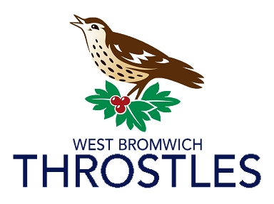West Bromwich Throstles (PL in NFL style)