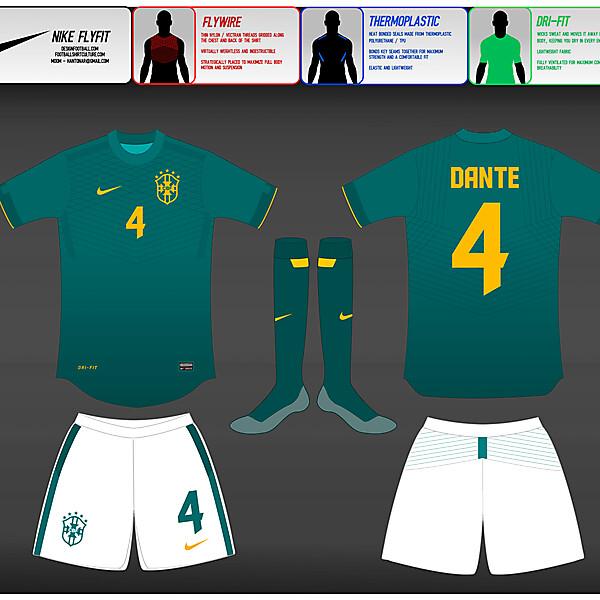 (2) Nike Fly-Fit  : Brasil