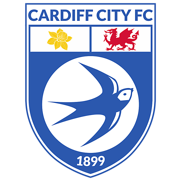 Cardiff City Concept