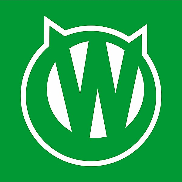 VfL Wolsfburg