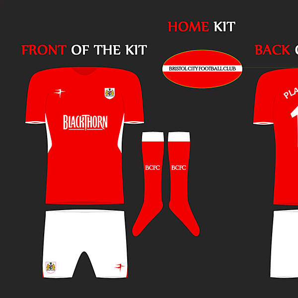 Bristol City 2014/15 Home Kit