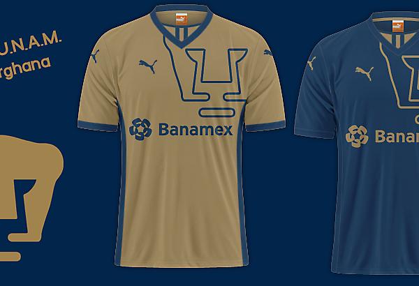 Club de Fútbol Universidad Nacional A. C.